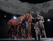 William Ilkley, Danny Hendrix. War Horse 2019. Photo_Brinkhoff&Mogenburg