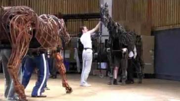War Horse - Video Diary Episode 1